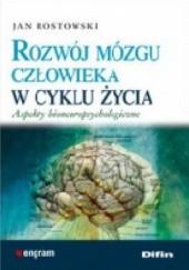 Okładka książki Rozwój mózgu człowieka w cyklu życia Jan Rostkowski